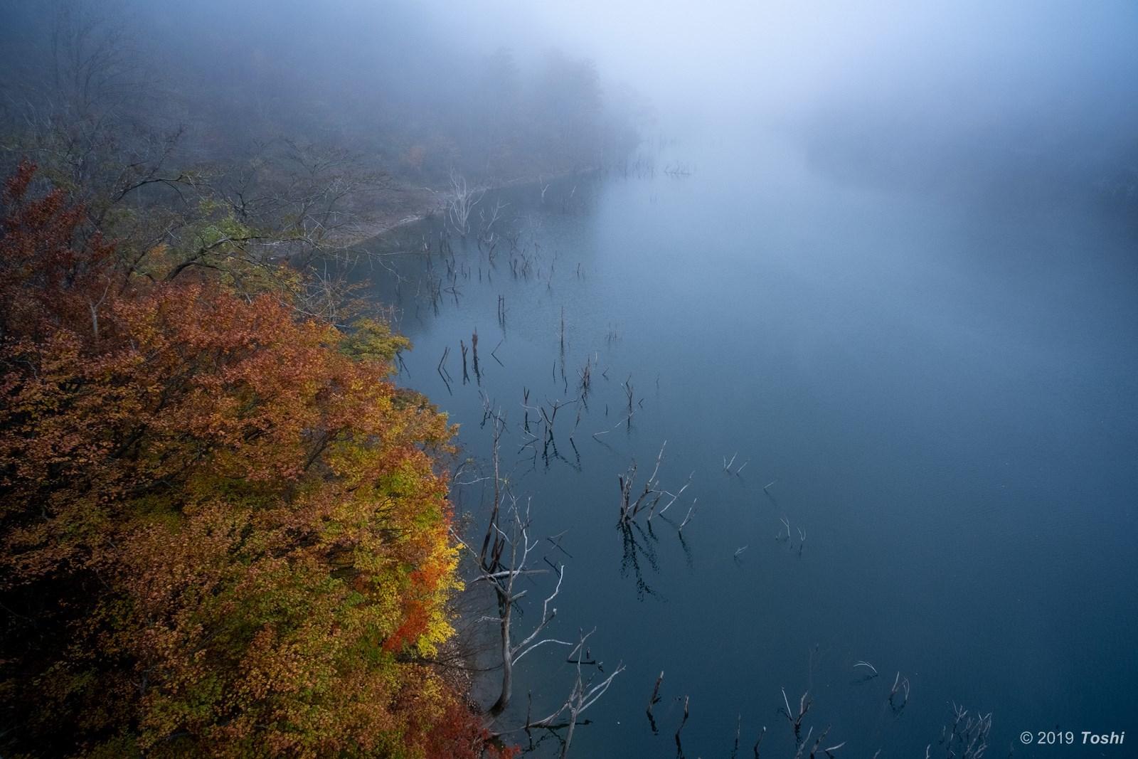 霧の徳山ダム 1_c0350572_23250624.jpg