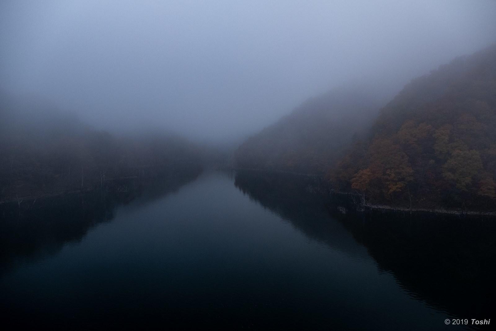 霧の徳山ダム 1_c0350572_23252698.jpg