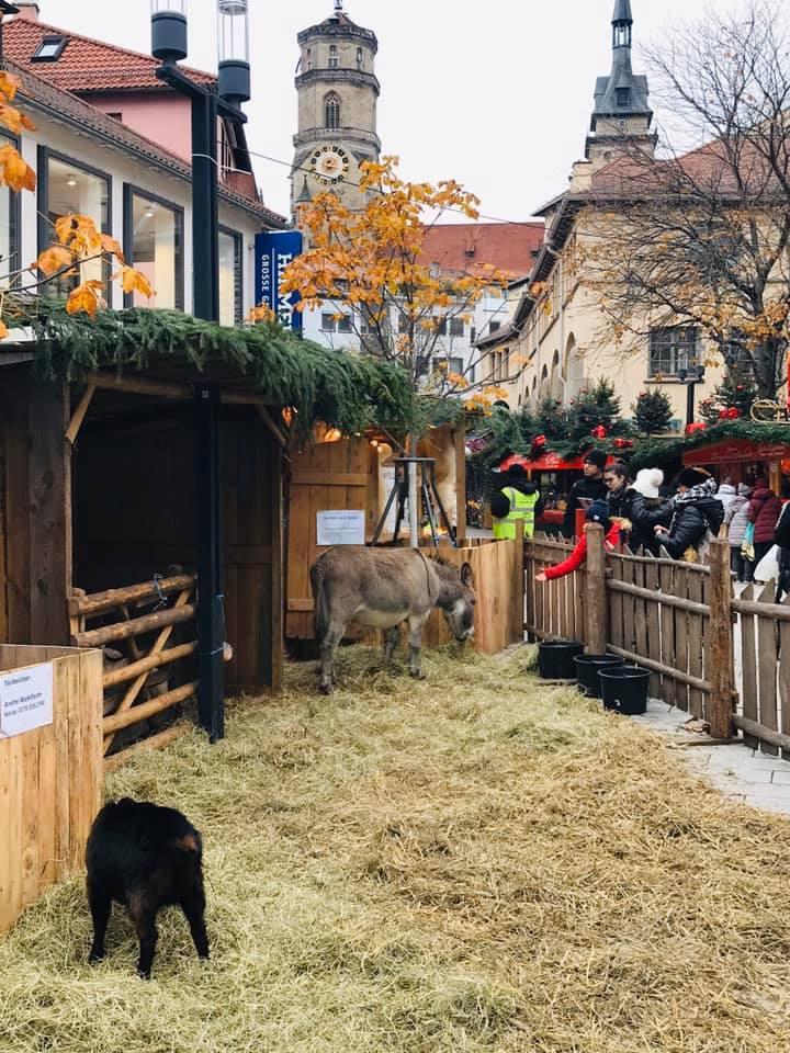 クリスマスマーケット巡りⅥ Stuttgart シュツッツガルト_a0100596_14390605.jpg