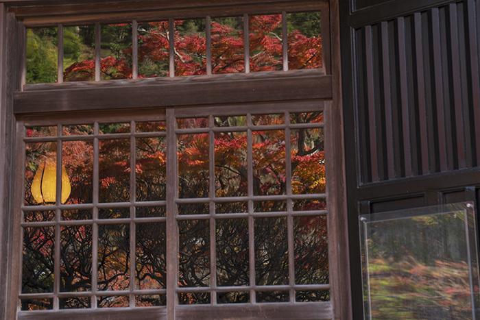 北鎌倉・円覚寺の紅葉が見頃です_b0145398_22475597.jpg