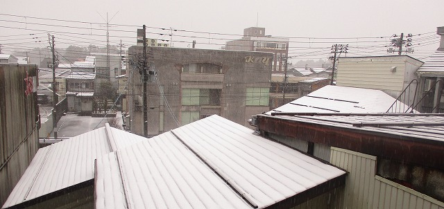 初雪_b0163804_08313744.jpg