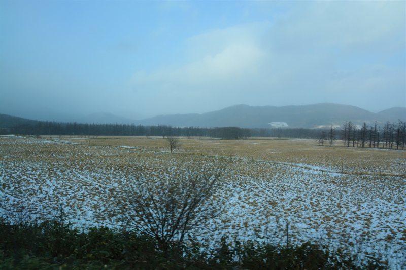 新幹線で北海道へ(5)帯広_a0148206_10310177.jpg