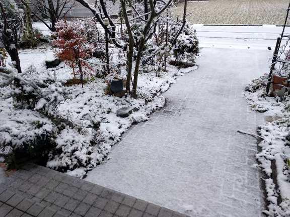 初雪_c0112206_12185843.jpg