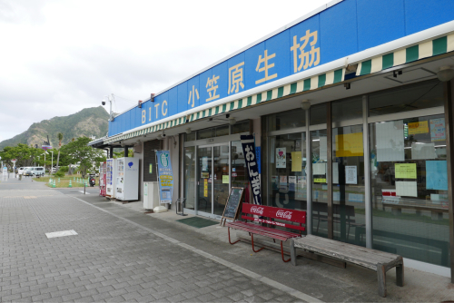 海界の村を歩く 太平洋 父島(東京都)集落編_d0147406_19073632.jpg