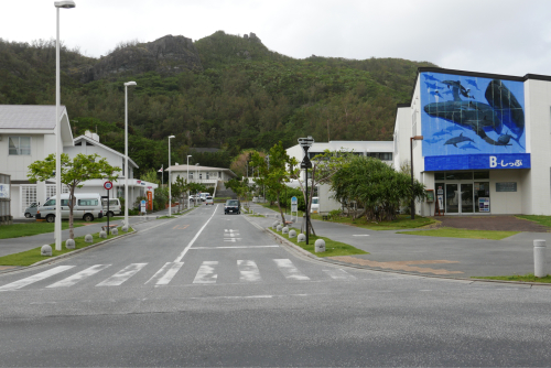 海界の村を歩く 太平洋 父島(東京都)集落編_d0147406_19115971.jpg