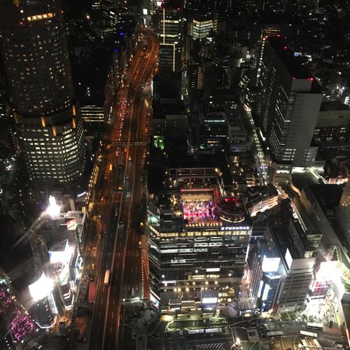 渋谷スクランブルスクエアに行ってきた_a0037910_10231832.jpg