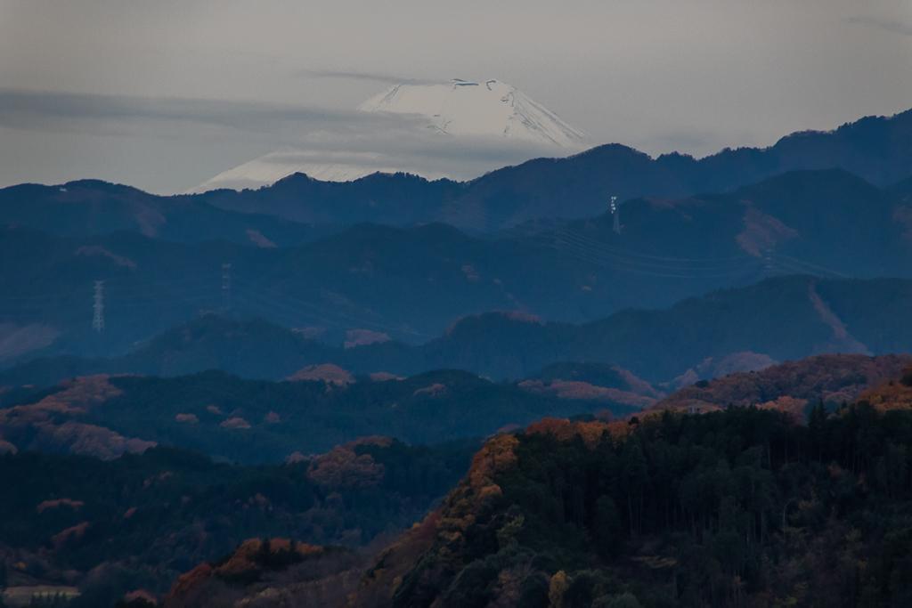 今日も日和田山へ_b0010915_20110549.jpg