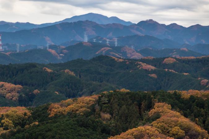 今日も日和田山へ_b0010915_20111066.jpg