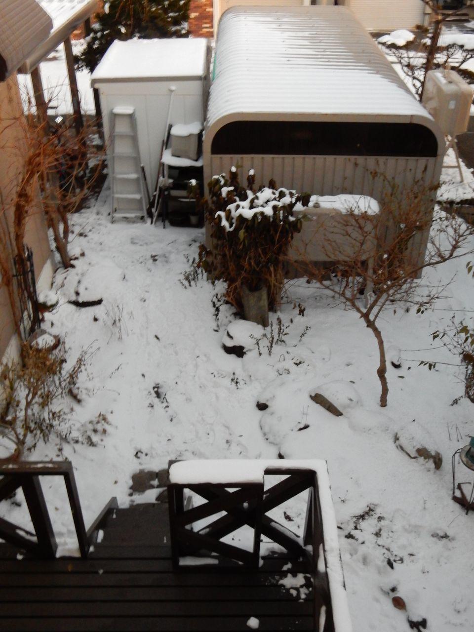 降らないのに雪も消えない_c0025115_21442972.jpg
