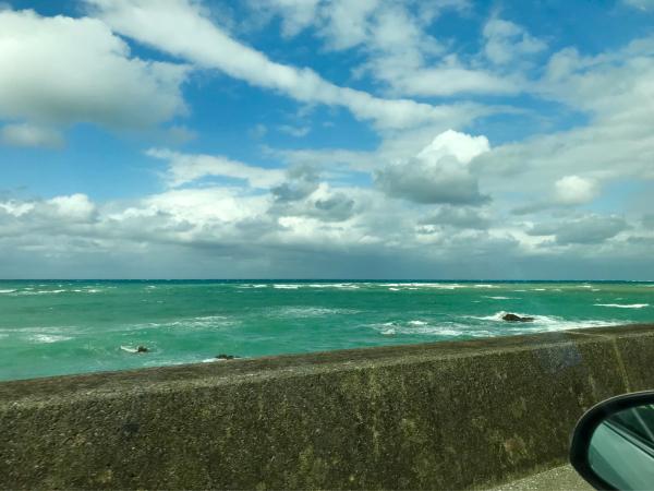 2019 沖縄の旅 3 @ 比地大滝_b0157216_18470507.jpg