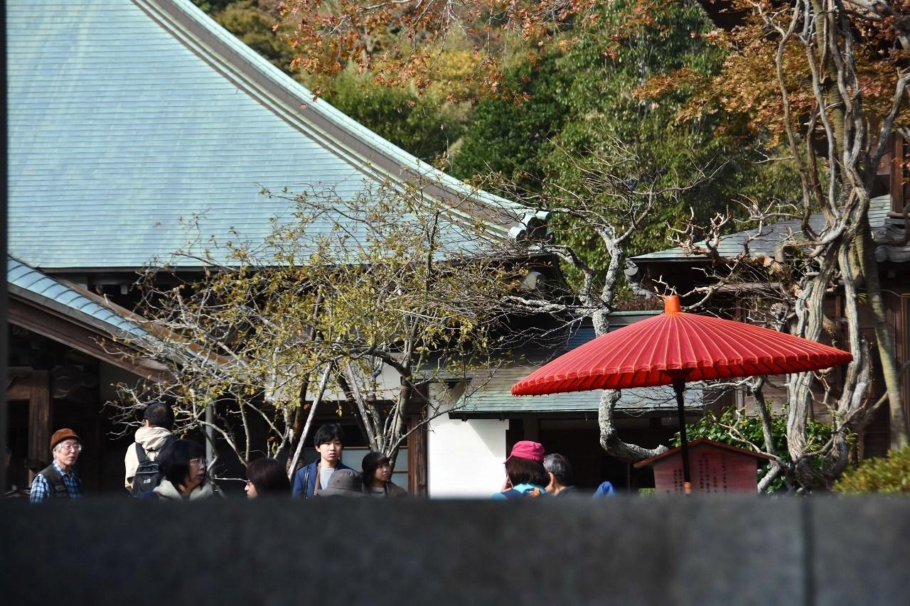 鎌倉紅葉 海蔵寺_d0065116_21425012.jpg