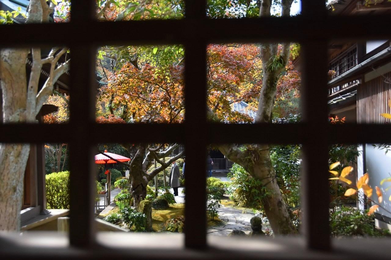 鎌倉紅葉 海蔵寺_d0065116_21503449.jpg