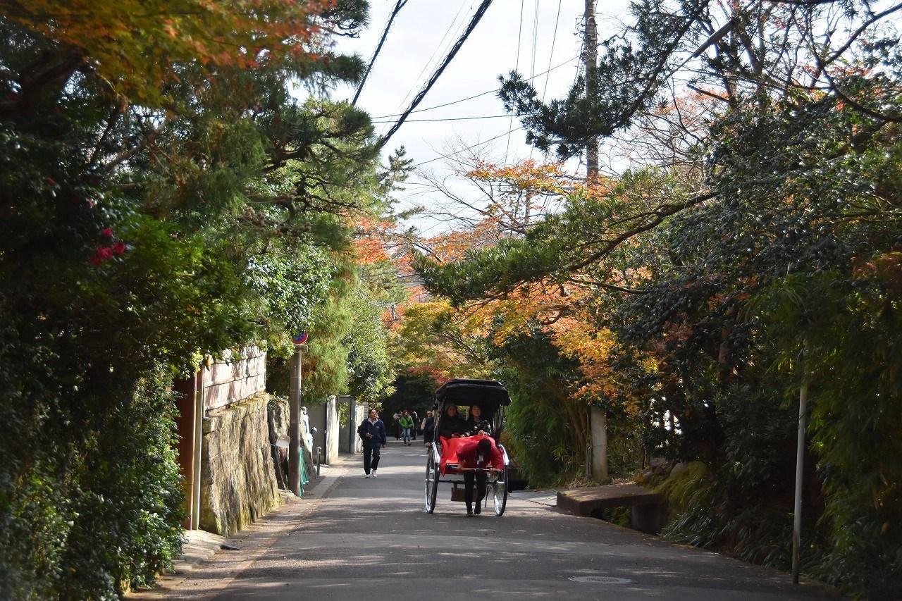 鎌倉紅葉 海蔵寺_d0065116_21543773.jpg