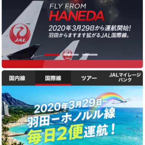 鬼が笑っても構わない!JAL国際線の来年分予約_d0285416_08475673.jpg