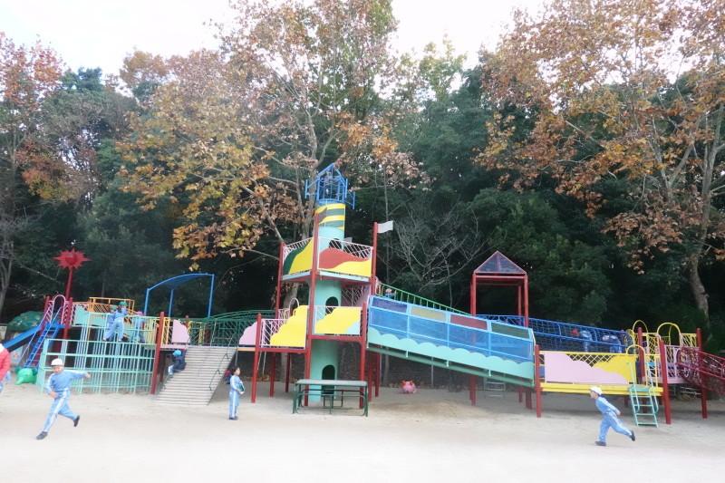 美木多幼稚園晩秋の風景_a0212624_14372352.jpg