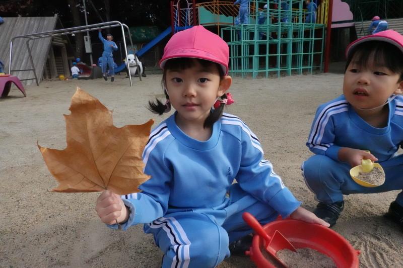 美木多幼稚園晩秋の風景_a0212624_14373874.jpg