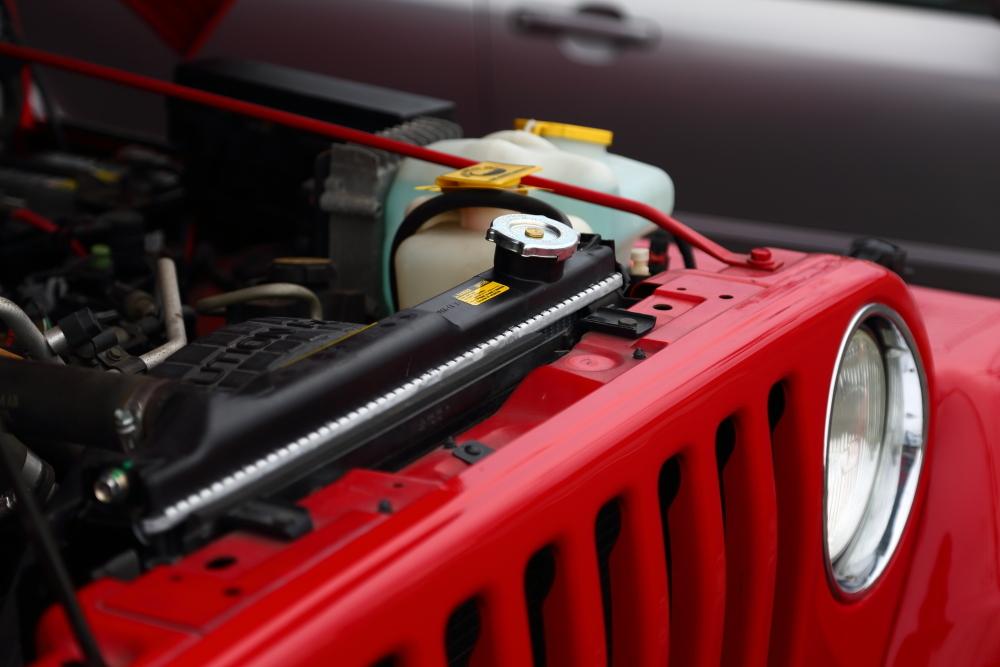 ホワイトTJ内装清掃作業再開 各車両作業報告_f0105425_18432040.jpg