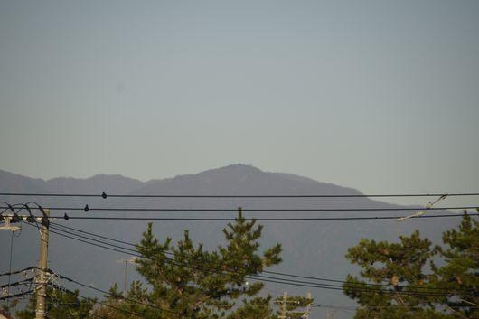 富士山きれいな一日_c0162128_23012765.jpg