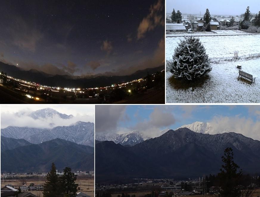 ツリーが雪で白く_a0212730_16202601.jpg