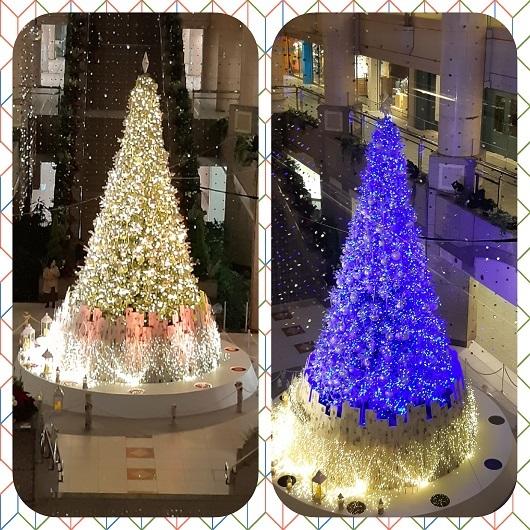 美しいクリスマスイルミネーション_e0307335_16404361.jpg