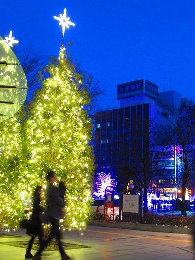 札幌の冬イルミネーションとさえら他食事_e0373235_06303373.jpeg