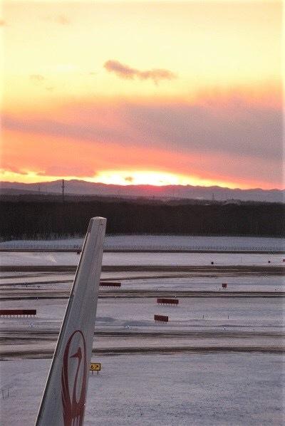 札幌の冬イルミネーションとさえら他食事_e0373235_07221741.jpeg