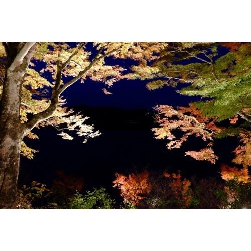 夕焼けの渚 紅葉祭り_a0335867_18371266.jpeg