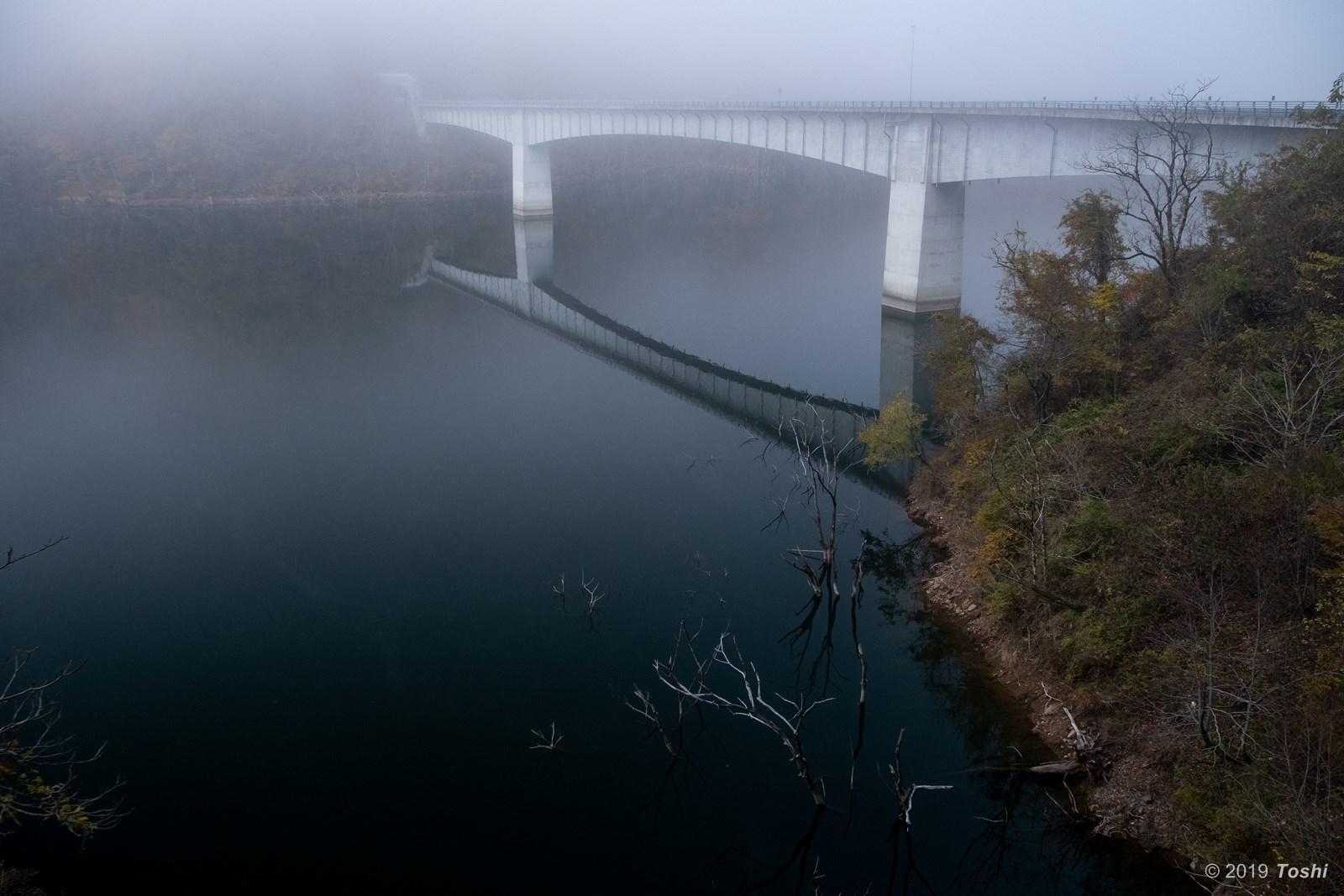 霧の徳山ダム 2_c0350572_21425519.jpg