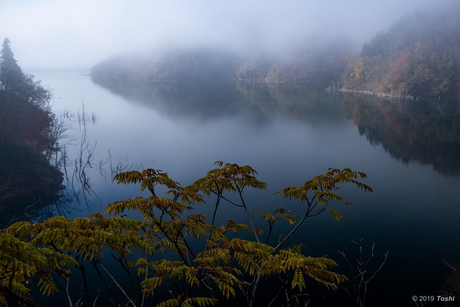 霧の徳山ダム 2_c0350572_21430572.jpg