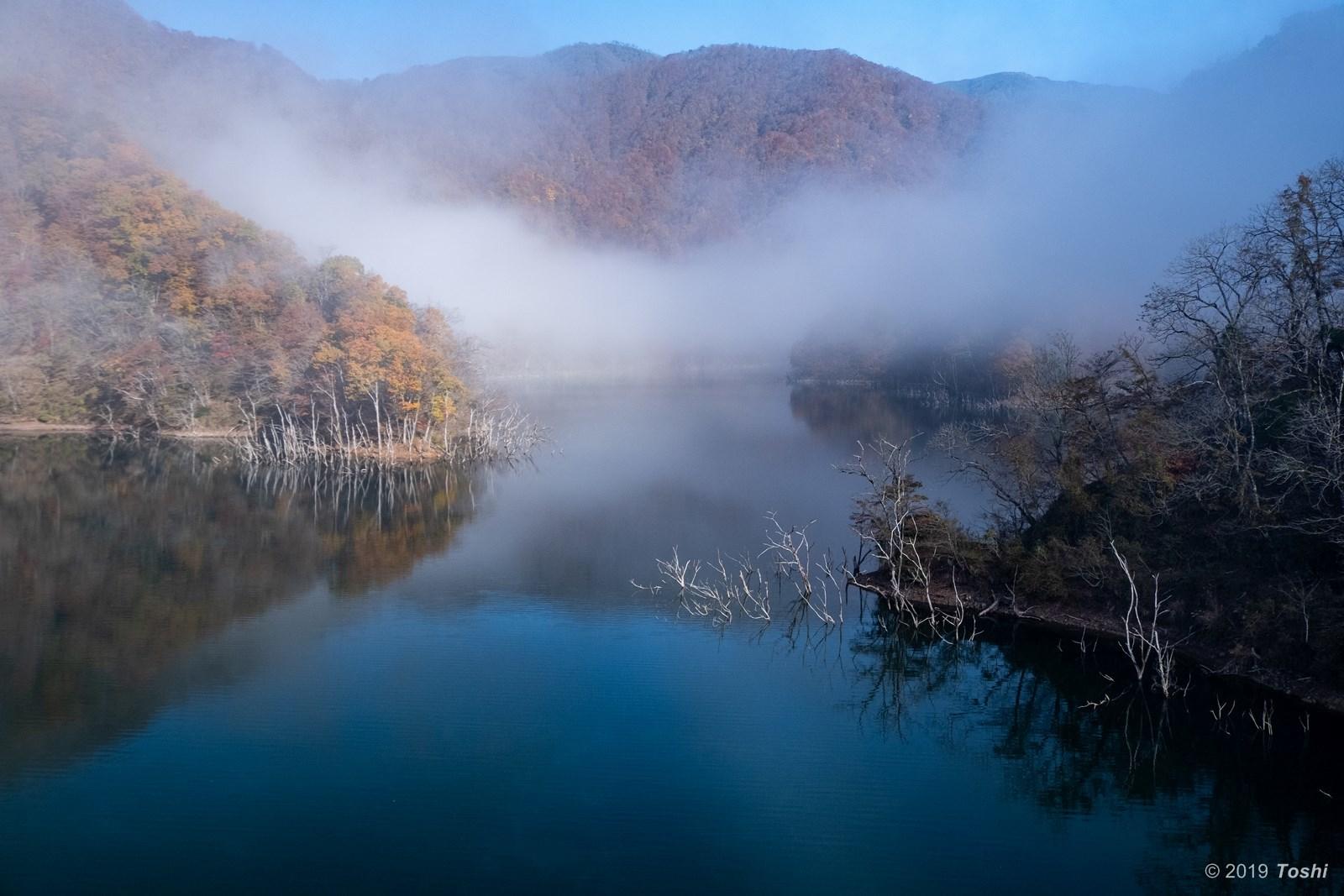 霧の徳山ダム 2_c0350572_21431533.jpg