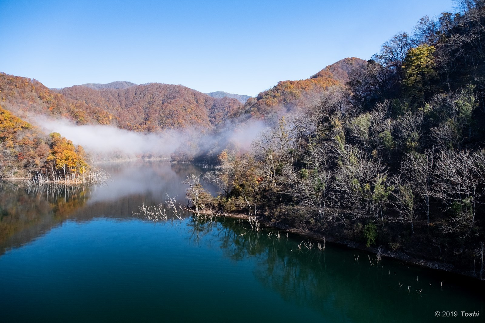 霧の徳山ダム 2_c0350572_21432656.jpg