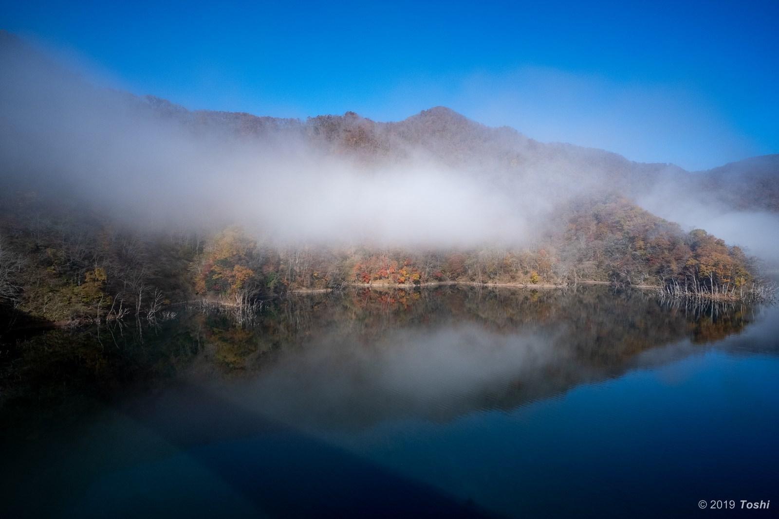 霧の徳山ダム 2_c0350572_21432959.jpg