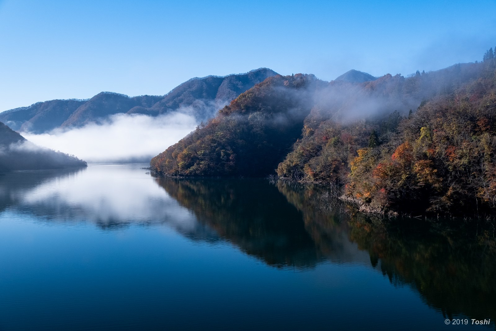 霧の徳山ダム 2_c0350572_21433884.jpg