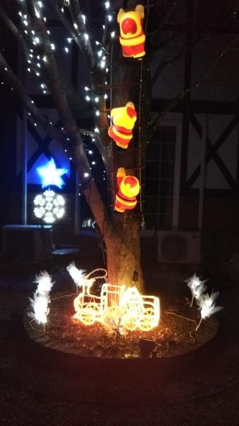 クリスマスの準備できました。_e0262382_10065849.jpg
