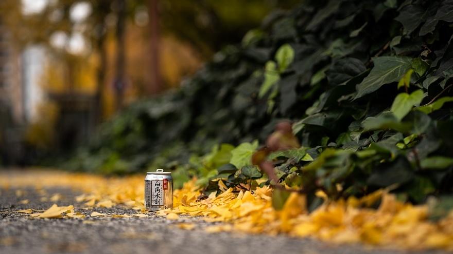黄色い桜通り_d0353489_22282653.jpg