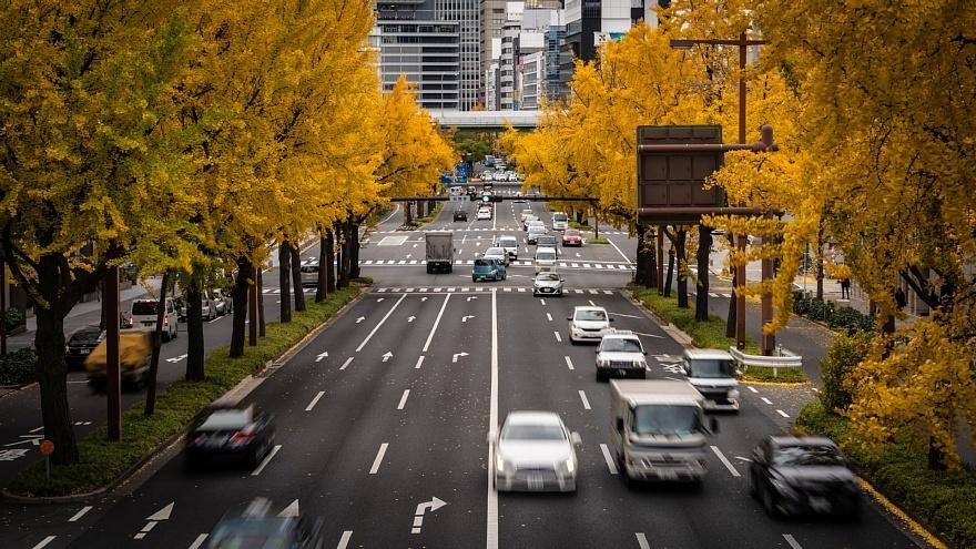 黄色い桜通り_d0353489_22283920.jpg