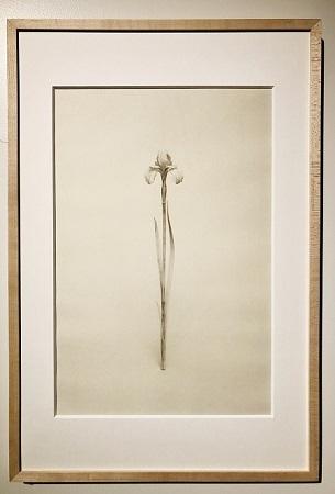 橋本雅也「間なるもの-霧のあと-」展 ~12月14日(土)まで_d0208992_12300322.jpg
