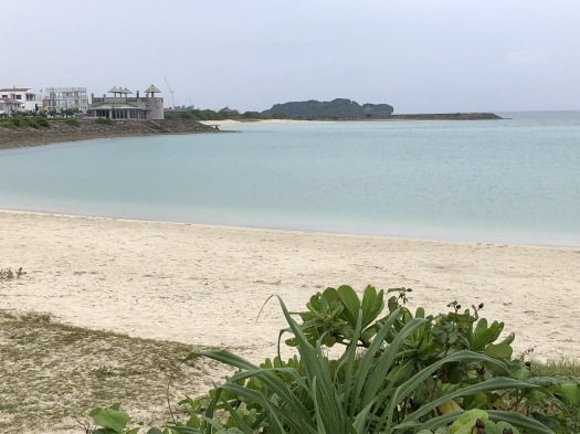 沖縄に来ています❗_a0130305_17495725.jpeg