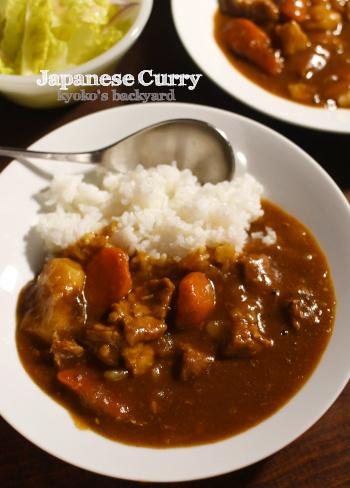 豚骨スープで、バリ辛カレー_b0253205_11410020.jpg