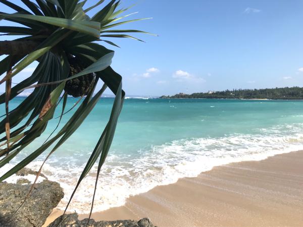 2019 沖縄の旅 5 @ カフェ こくう_b0157216_22575155.jpg