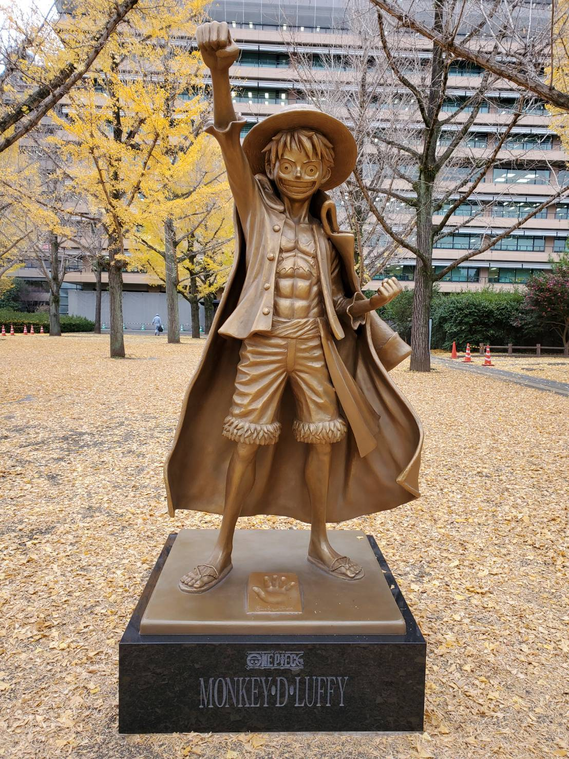 芋さんが! 熊本〜〜!_a0163623_02303549.jpg
