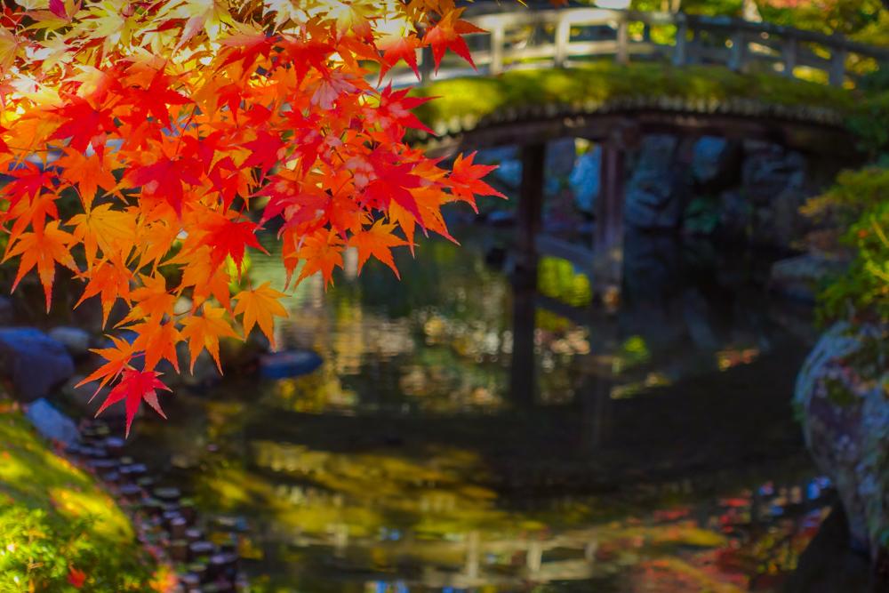 京都2019 その4_c0220824_13554815.jpg