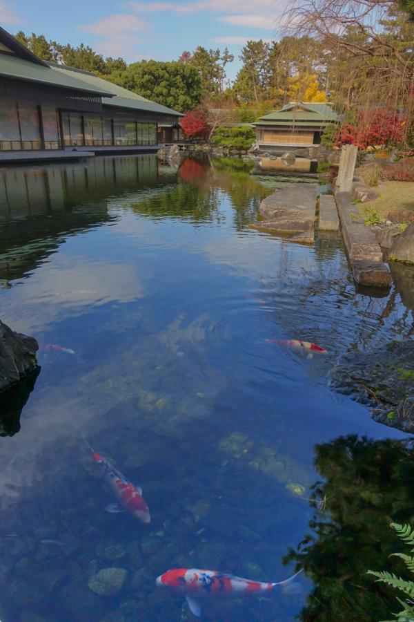 京都2019 その4_c0220824_13561652.jpg
