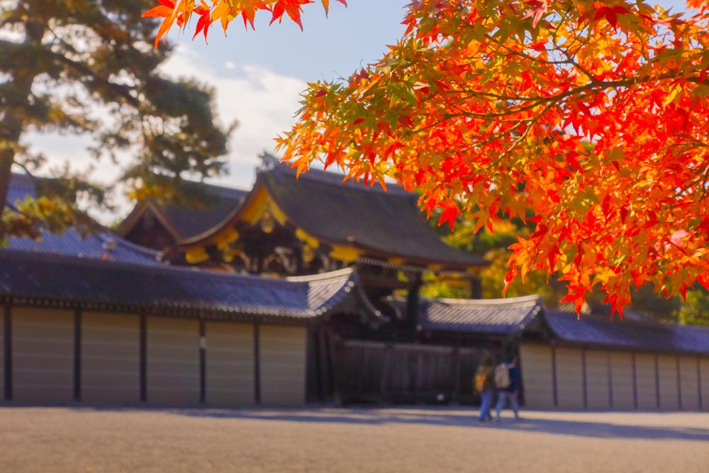 京都2019 その4_c0220824_13562447.jpg