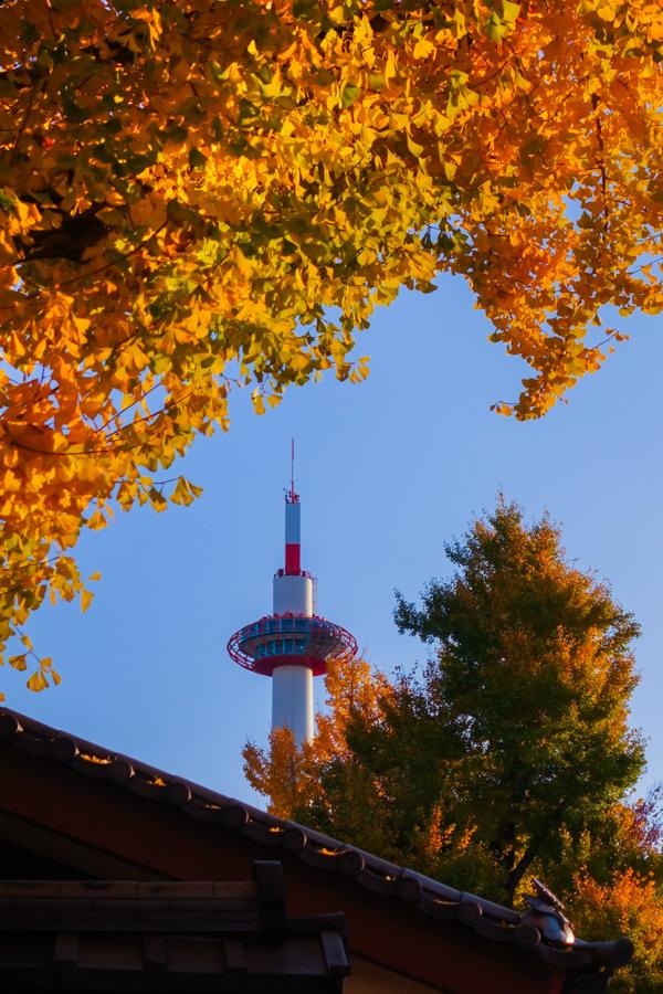 京都2019 その4_c0220824_14045942.jpg