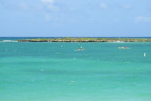 カイルアビーチでクラゲに刺された!!_a0293226_10361232.jpg