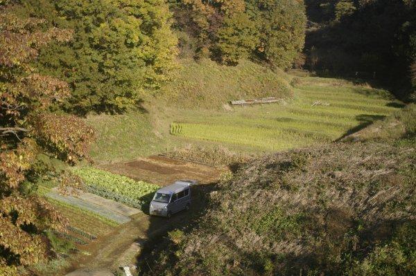若葉台から新百合ヶ丘のトンネル道路が開通 X-E2 Summaron35mm/3.5_e0129750_10065370.jpg
