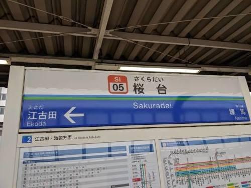 西武鉄道一日乗車券の旅【前編】_a0329563_15415349.jpg