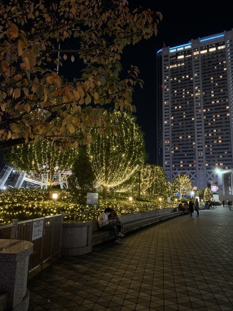 11月の旅〜③〜千葉のオンリーユーホームさんを訪ねる旅_c0274374_00120174.jpeg