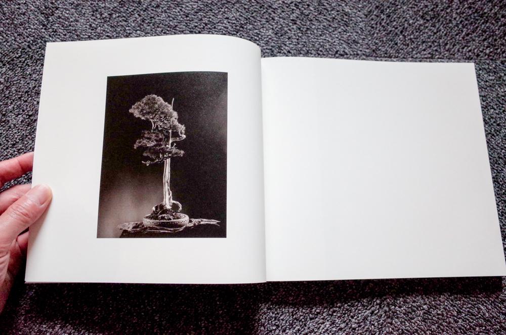 山本昌男 Masao Yamamoto「 手中一滴 」_c0016177_12401082.jpg